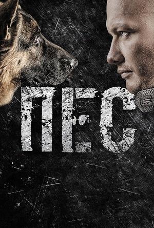 Серіал «Пес» (2015 – ...)