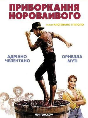 Фільм «Приборкання норовливого» (1980)