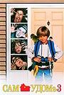 Фільм «Сам удома 3» (1997)