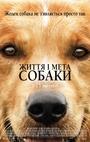 Фільм «Життя і мета собаки» (2017)