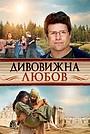 Фільм «Дивовижна любов» (2012)
